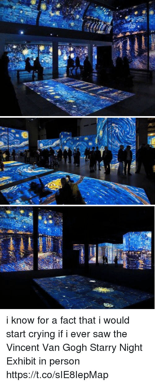 Crying, Funny, and Saw: i know for a fact that i would start crying if i ever saw the Vincent Van Gogh Starry Night Exhibit in person https://t.co/sIE8IepMap