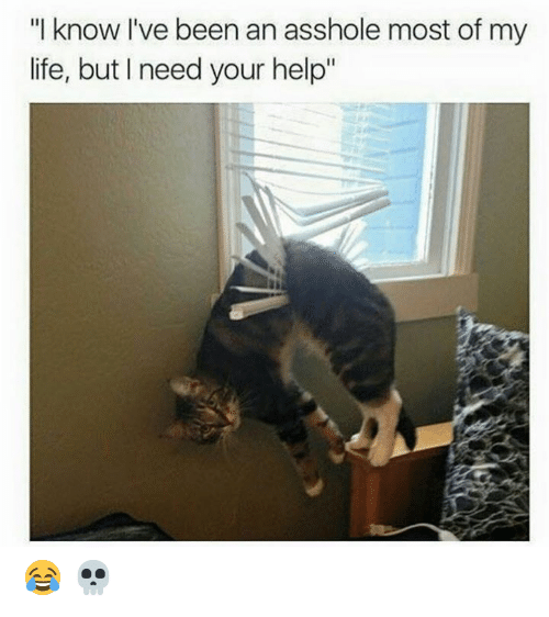 """Life, Memes, and Help: """"I know I've been an asshole most of my  life, but I need your help"""" 😂 💀"""