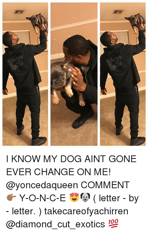 Memes, Diamond, and Change: I KNOW MY DOG AINT GONE EVER CHANGE ON ME! @yoncedaqueen COMMENT 👉🏾 Y-O-N-C-E 😍🐶 ( letter - by - letter. ) takecareofyachirren @diamond_cut_exotics 💯