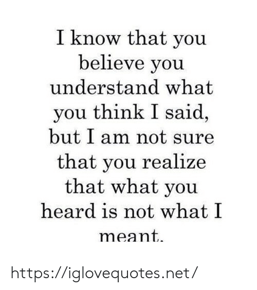 Net, Believe, and Think: I know that you  believe you  understand what  you think I said,  but I am not sure  that you realize  that what you  heard is not what I  meant https://iglovequotes.net/