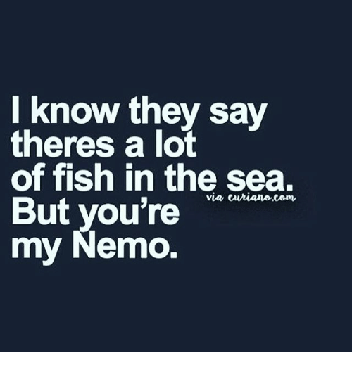 there a lot of fish in the sea but