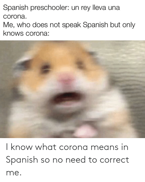 I Know What Corona Means In Spanish So No Need To Correct Me
