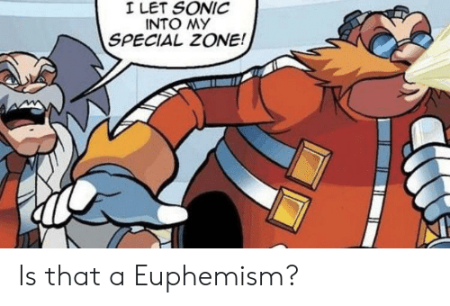 Euphemism, Sonic, and Zone: I LET SONIC  INTO MY  SPECIAL ZONE! Is that a Euphemism?