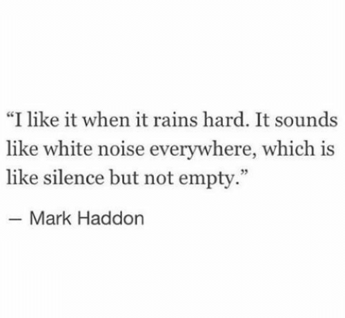 """White, Silence, and White Noise: """"I like it when it rains hard. It sounds  like white noise everywhere, which is  like silence but not empty.""""  Mark Haddon"""