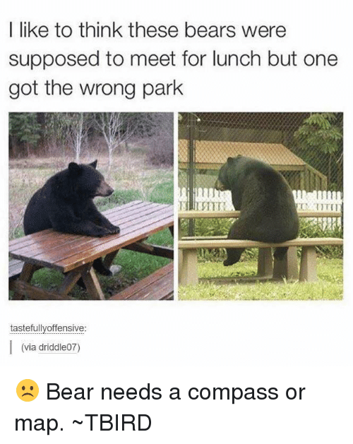 Memes, Compassion, and 🤖: I like to think these bears were  supposed to meet for lunch but one  got the wrong park  tastefully offensive  I (via driddle07) ☹️ Bear needs a compass or map.  ~TBIRD