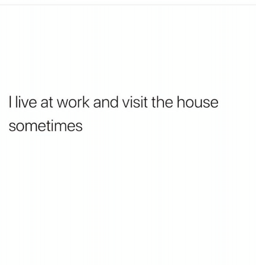 Memes, Work, and House: I live at work and visit the house  sometimes