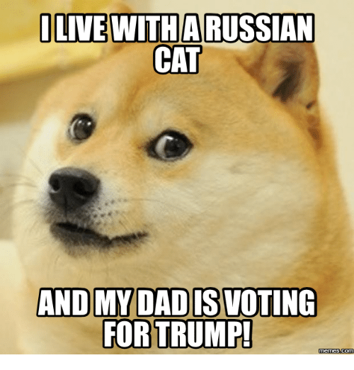 I Live With Arussian Cat And My Dadiswoting For Trump Memes Com I