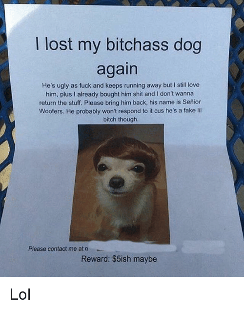 Bitch, Fake, and Lol: I lost my bitchass dog  again  He's ugly as fuck and keeps running away but I still love  him, plus I already bought him shit and I don't wanna  return the stuff. Please bring him back, his name is Señion  Woofers. He probably won't respond to it cus he's a fake lil  bitch though.  Please contact me at o  Reward: $5ish maybe Lol