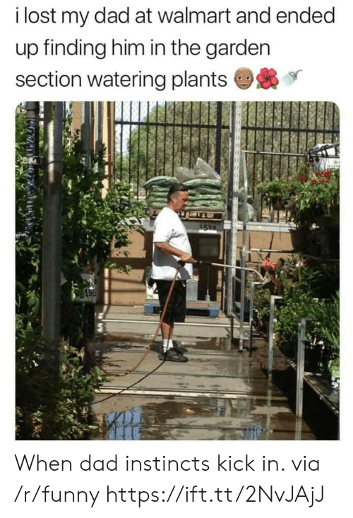 Dad, Funny, and Walmart: i lost my dad at walmart and ended  up finding him in the garden  section watering plants When dad instincts kick in. via /r/funny https://ift.tt/2NvJAjJ