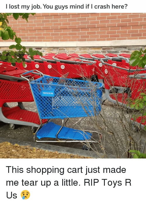 Funny, Shopping, and Toys R Us: I lost my job. You guys mind if I crash here? This shopping cart just made me tear up a little. RIP Toys R Us 😢
