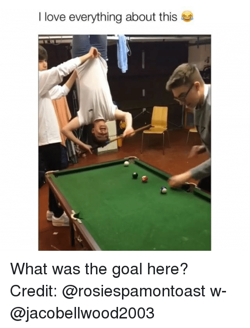Love, Memes, and Goal: I love everything about this What was the goal here? Credit: @rosiespamontoast w- @jacobellwood2003