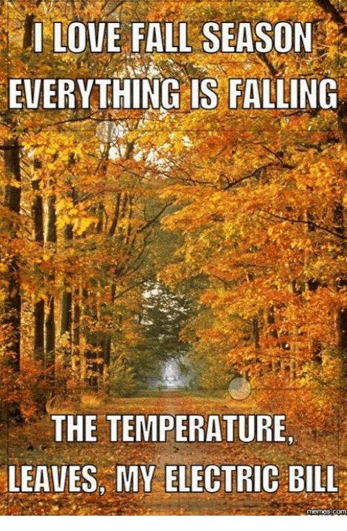 i love fall season everything is falling the temperature leaves 4224394 i love fall season everything is falling the temperature leaves my
