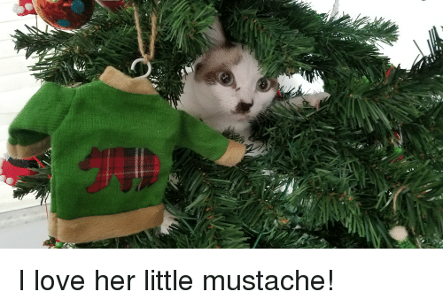 Love, Her, and Mustache: I love her little mustache!