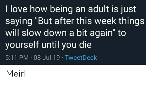 "Being an Adult, Love, and MeIRL: I love how being an adult is just  saying ""But after this week things  will slow down a bit again"" to  yourself until you die  5:11 PM 08 Jul 19 TweetDeck Meirl"