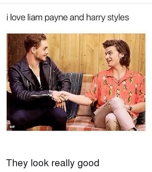 Gif, Love, and Memes: i love liam payne and harry styles  1  GIF They look really good