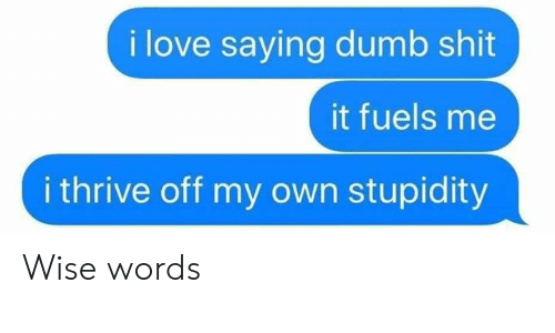 Dumb, Love, and Memes: i love saying dumb shit  it fuels me  i thrive off my own stupidity Wise words