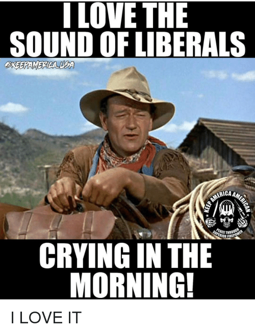 i love the sound of liberals crying in the morning 13699248 25 best liberal cry baby memes liberals crying memes, liberal