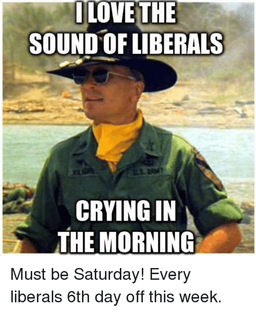 Crying, Love, and Memes: I LOVE THE  SOUND OF LIBERALS  CRYING IN  THE MORNING Must be Saturday! Every liberals 6th day off this week.