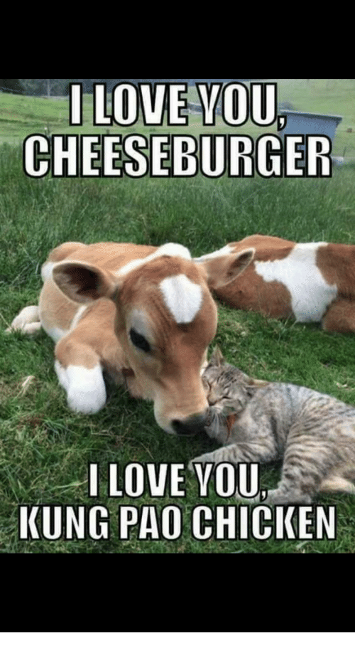i love you cheeseburger i love you kung pao chicken 18003020 i love you cheeseburger i love you kung pao chicken funny meme