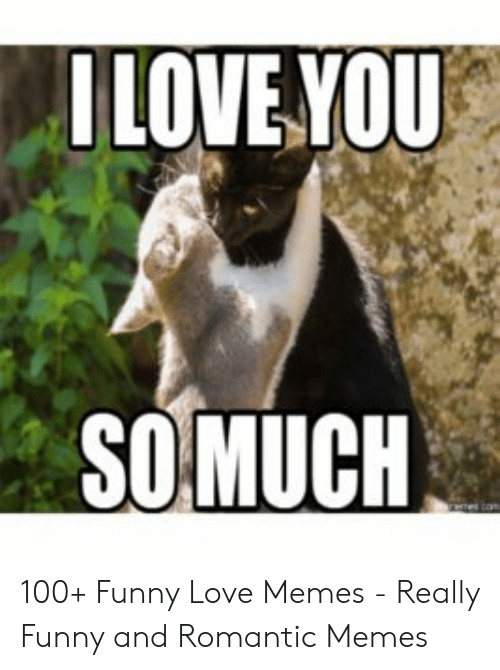 I Love You So Much 100 Funny Love Memes Really Funny And
