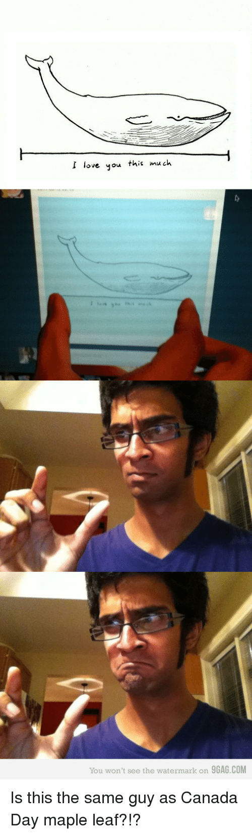 9gag, Love, and I Love You: I love you this much  You won't see the watermark on 9GAG.COM Is this the same guy as Canada Day maple leaf?!?