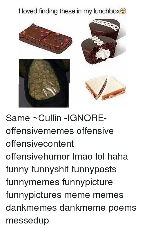 i-loved-finding-these-in-my-lunchbox-same-~cullin-ignore-8256206.png 1e53edea99