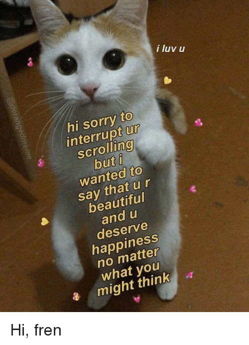 Beautiful, Sorry, and Happiness: i luv u  hi sorry to  interrupt ur  scrolling  but i  wanted to  say that ur  beautiful  and u  deserve  happiness  no matter  what you  might think Hi, fren