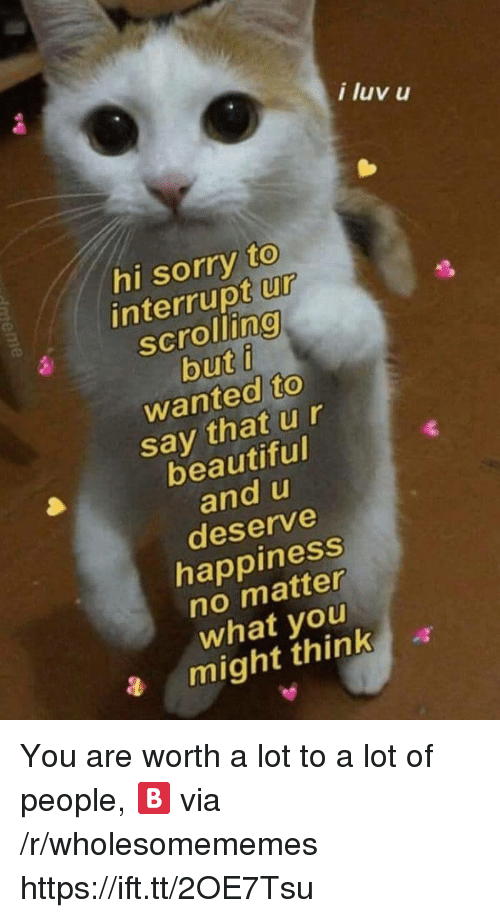 Beautiful, Sorry, and Happiness: i luv u  hi sorry to  interrupt ur  scrolling  buti  wanted to  say that u r  beautiful  and u  deserve  happiness  no matter  what you  a might think You are worth a lot to a lot of people, 🅱️ via /r/wholesomememes https://ift.tt/2OE7Tsu