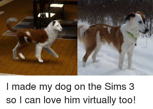 Love, The Sims, and The Sims 3
