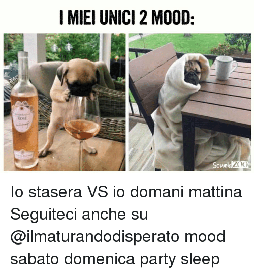 Memes, Mood, and Party: I MIEI UNICI 2 MO0D:  ROSE  Scuo Io stasera VS io domani mattina Seguiteci anche su @ilmaturandodisperato mood sabato domenica party sleep