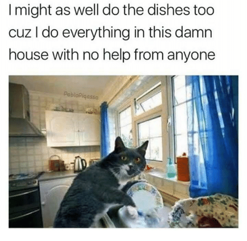 Help, House, and This: I might as well do the dishes too  cuz I do everything in this damn  house with no help from anyone  bloPiqa