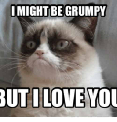 i might be grumpy but iloveyou 17593183 ✅ 25 best memes about i love you cat meme i love you cat memes