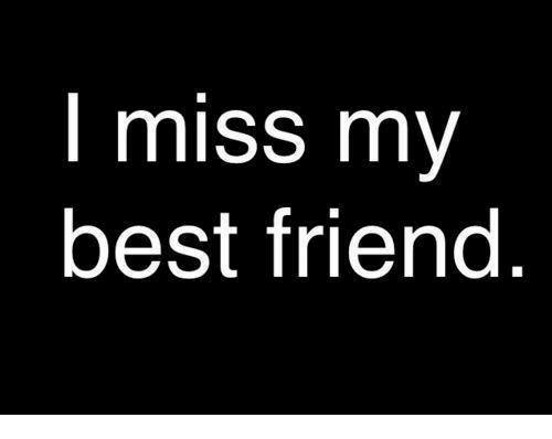 Best Friend, Memes, and Best: I miss my  best friend