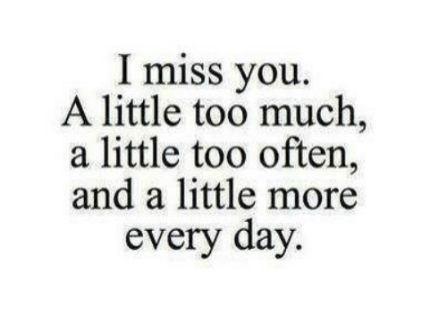 Too Much, Day, and You: I miss you.  A little too much,  a little too often,  and a little more  every day