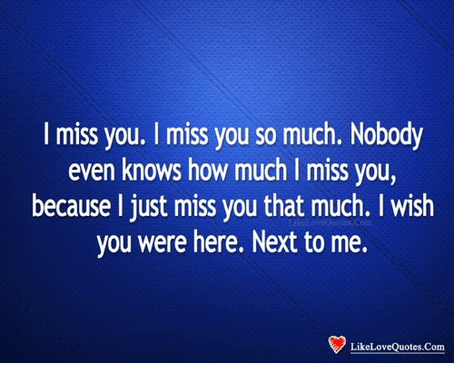 I Miss You I Miss You So Much Nobody Even Knows How Much I Miss You