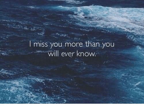 I Miss You More Than You Will Ever Know Meme On Meme