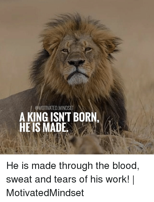 Bloods, Memes, and Work: I@MOTIVATED.MINDSET  A KING ISN'T BORN,  HE IS MADE He is made through the blood, sweat and tears of his work!   MotivatedMindset