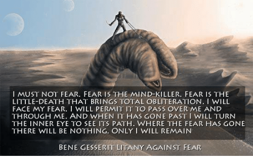 fear is the little death