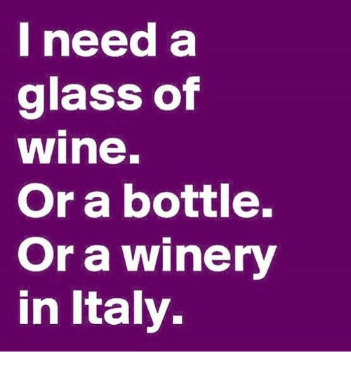 i need a glass of wine or a bottle or a winery in italy meme on me me