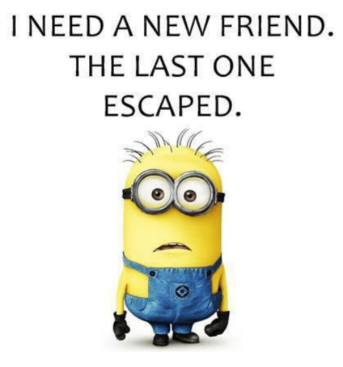 I need new friends meme 28 images new friends memes for I need a new home