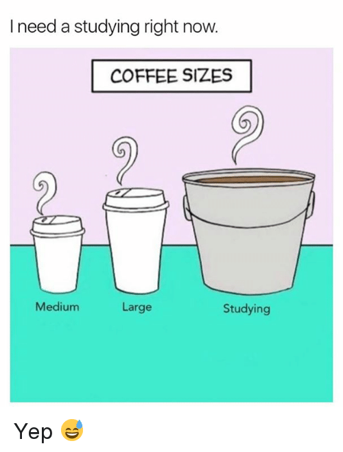 Coffee, Medium, and Now: I need a studying right now.  COFFEE SIZES  Medium  Studying  Large Yep 😅