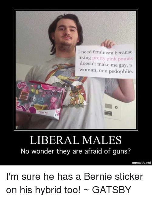Feminism guns and memes i need feminism because liking pretty pink ponies doesn