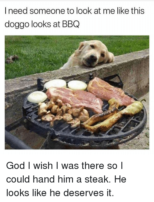 Funny, God, and Doggo: I need someone to look at me like this  doggo looks at BBQ God I wish I was there so I could hand him a steak. He looks like he deserves it.