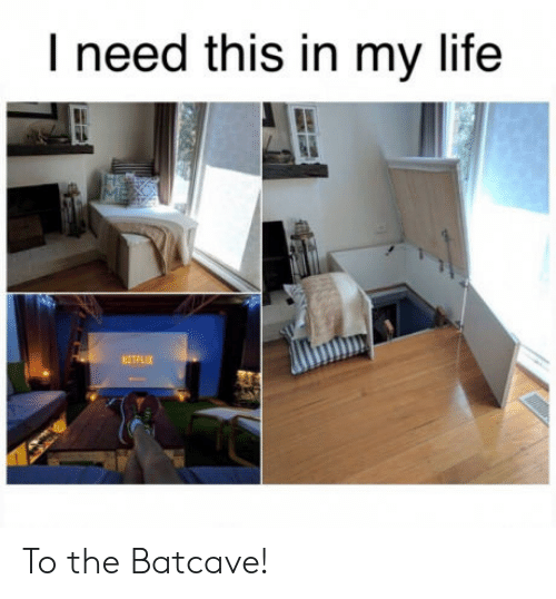 Life, This, and In My Life: I need this in my life  ETFLIX To the Batcave!