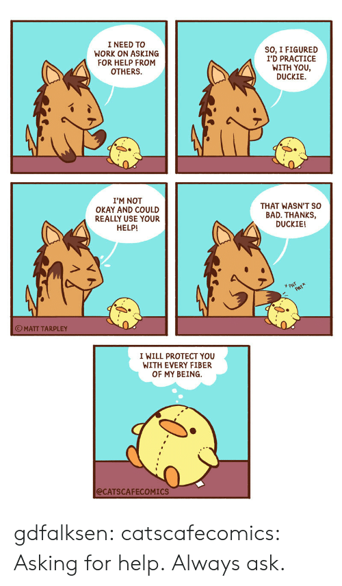 Bad, Target, and Tumblr: I NEED TO  WORK ON ASKING  FOR HELP FROM  OTHERS  SO, I FIGURED  I'D PRACTICE  WITH YOU,  DUCKIE  I'M NOT  OKAY AND COULD  REALLY USE YOUR  THAT WASN'T SO  BAD. THANKS,  DUCKIE!  HELP!  PAT  PATX  OMATT TARPLEY  I WILL PROTECT YOU  WITH EVERY FIBER  OF MY BEING  @CATSCAFECOMICS gdfalksen: catscafecomics: Asking for help. Always ask.