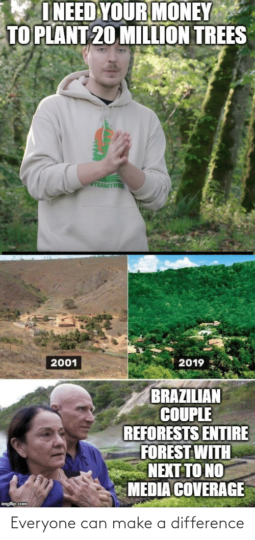 Money, Trees, and Brazilian: I NEED YOUR MONEY  TO PLANT 20 MILLION TREES  TEAMTRES  2019  2001  BRAZILIAN  COUPLE  REFORESTS ENTIRE  FOREST WITH  NEXT TO NO  MEDIA COVERAGE  imgflip.com Everyone can make a difference