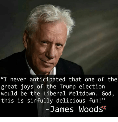 """God, Memes, and Trump: """"I never anticipated that one of the  great joys of the Trump electioin  would be the Liberal Meltdown. God,  this is sinfully delicious fun!""""  -James Woods"""