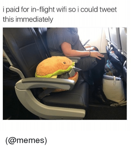 Funny, Meme, and Memes: i paid for in-flight wifi so i could tweet  this immediately (@memes)
