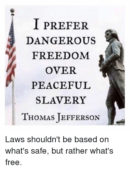 Image result for i prefer dangerous freedom over peaceful