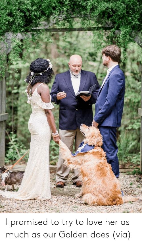 Aww, Love, and Reddit: I promised to try to love her as much as our Golden does(via)